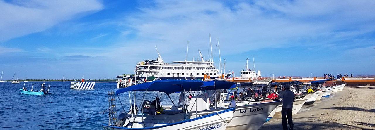 location bateau la paz 3