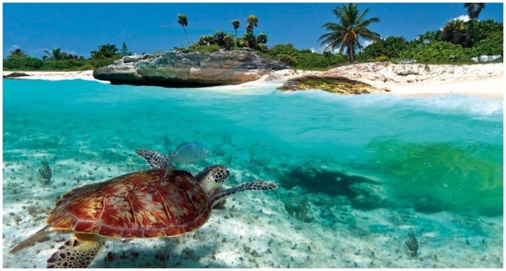 La mer des Caraïbes, à la rencontre des Caraïbes en bateau