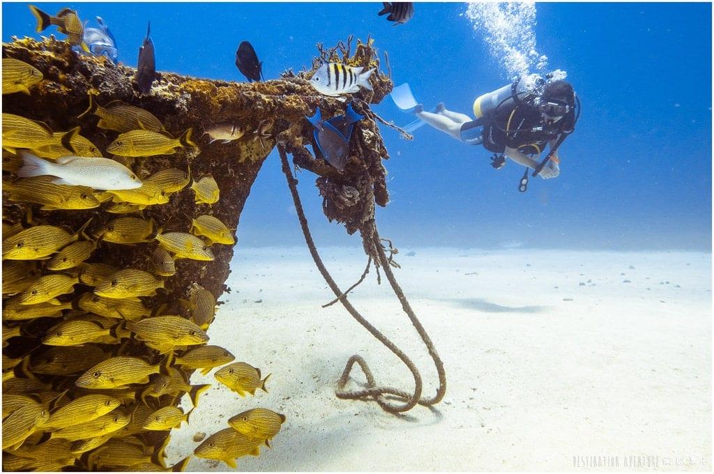 Plongées sous-marines à Saint-Martin dans les Caraïbes