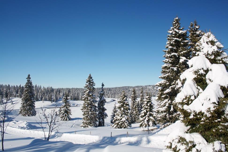 Le Jura en neige